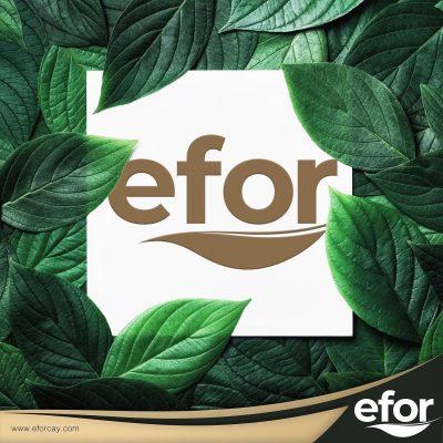 Türkiye'nin önde gelen çay markalarından EFOR ÇAY El Terminalleri ve Barkod Yazıcılarda bizi tercih etti. Kendilerine Türkiye'nin barkod merkezi Desnet'i tercih ettikleri için teşekkür ediyoruz.